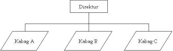 Stuktur Organisasi Garis